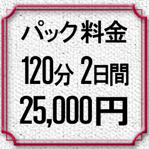 パック料金2時間×2日間25,000円