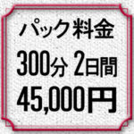 パック料金5時間×2日間45,000円